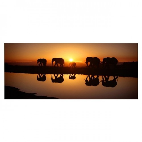 HM20KNV70x100-144 - Quadro Elephant...