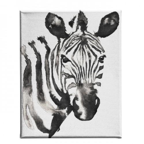 HM20KNV45x70-116 - Quadro Zebra...
