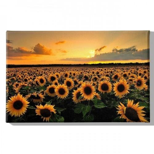 HM20KNV45x70-206 - Quadro Flowers...